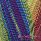Dapper Dreamer Tropical Rainbow