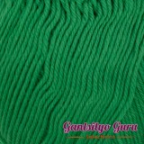 Gantsilyo Guru Baby Cashmere Acrylic Kelly Green