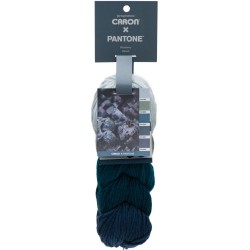 Caron x Pantone Blueberry