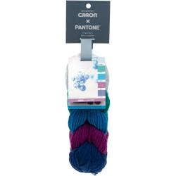 Caron x Pantone Frozen Berry