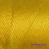 Caron Simply Soft Gold