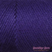 Caron Simply Soft Purple