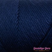 Caron Simply Soft Dark Country Blue