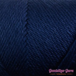 Caron Simply Soft Dark Country Blue