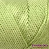 Caron Simply Soft Pistachio