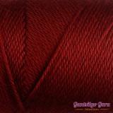 Caron Simply Soft Autumn Red