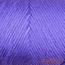 Caron Simply Soft Grape