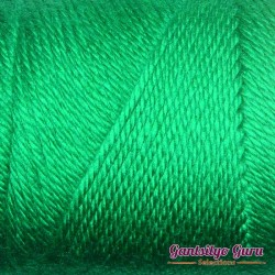 Caron Simply Soft Kelly Green