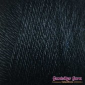 Caron Simply Soft Black