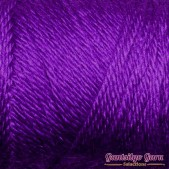Caron Simply Soft Iris