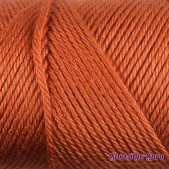 Caron Simply Soft Pumpkin