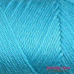Caron Simply Soft Blue Mint